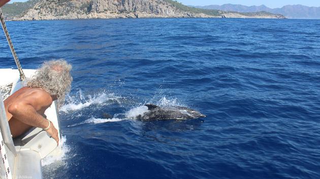 Votre séjour voile en catamaran sur les côtes de Croatie