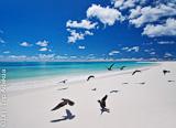 Deux itinéraires possibles pour votre séjour aux Seychelles - voyages adékua