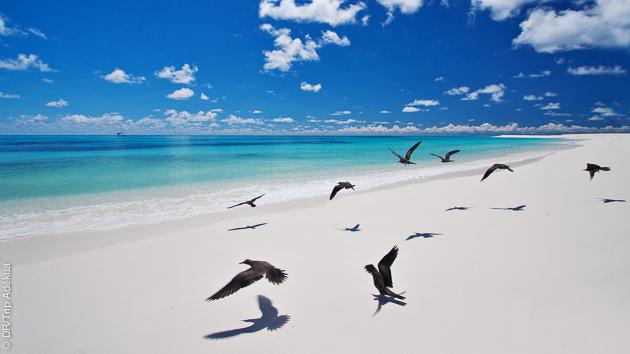 Explorez les plages de sable blanc des Seychelles pendant votre croisière