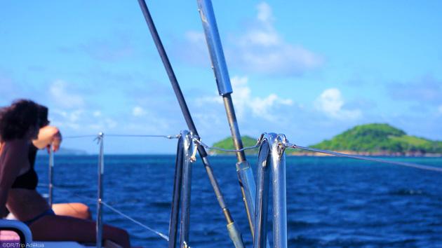 Savourez vos vacances de rêves aux Grenadines