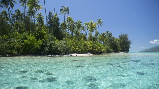 Des vacances de rêve pour explorer la Polynésie en catamaran