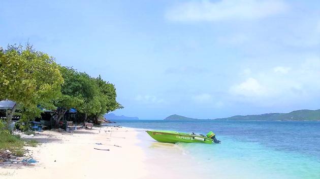 Une croisière en catamaran pour découvrir les plus beaux paysages des Caraïbes